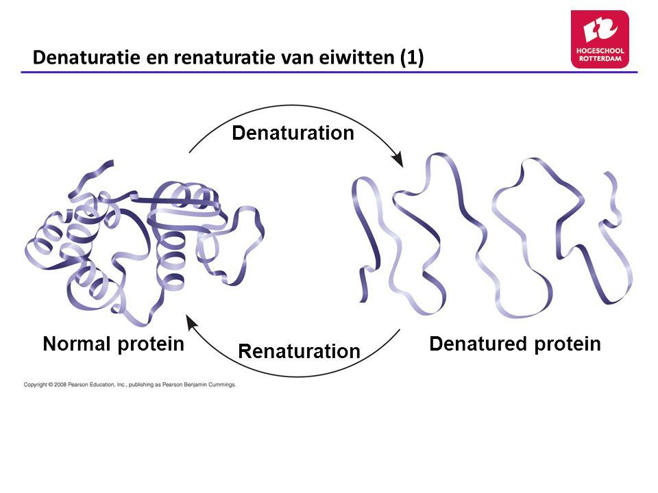 Denaturatie en renaturatie van eiwitten (1)
