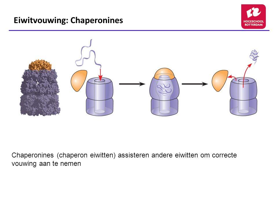 Eiwitvouwing: Chaperonines