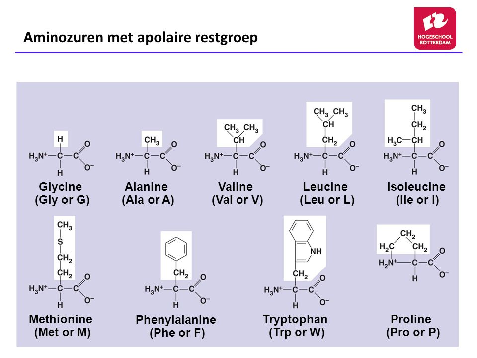 Aminozuren met apolaire restgroep