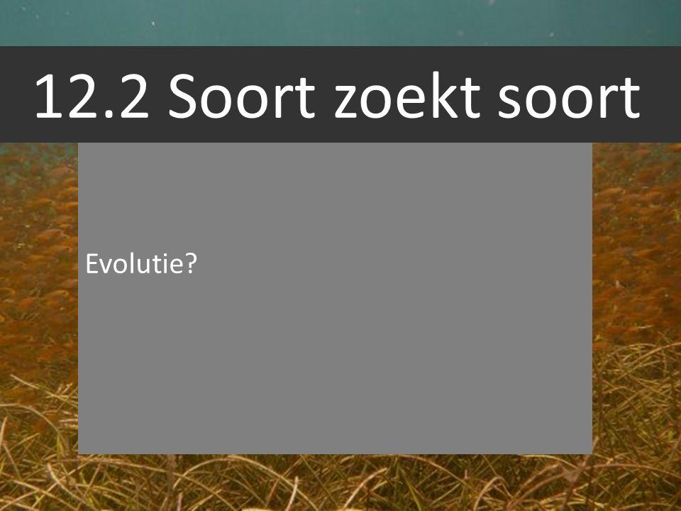12.2 Soort zoekt soort Evolutie