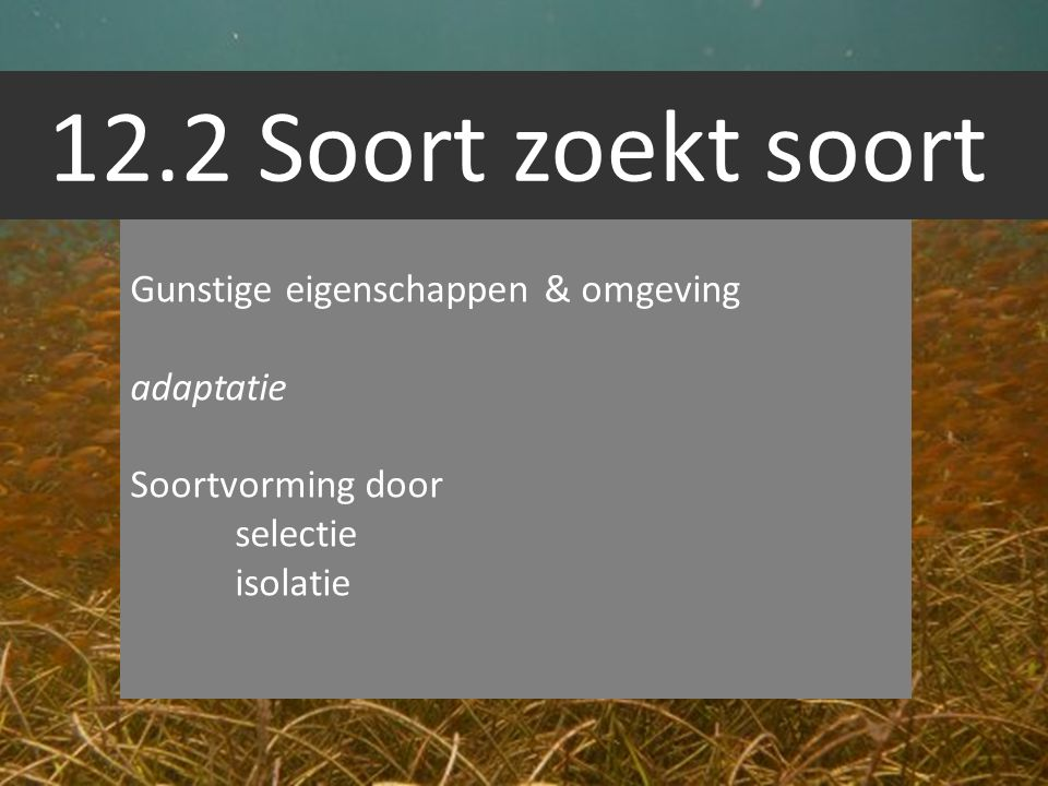 12.2 Soort zoekt soort Gunstige eigenschappen & omgeving adaptatie