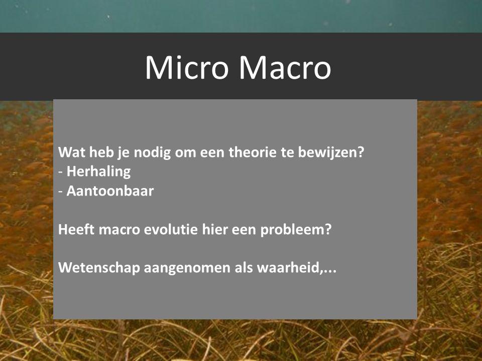 Micro Macro Wat heb je nodig om een theorie te bewijzen Herhaling
