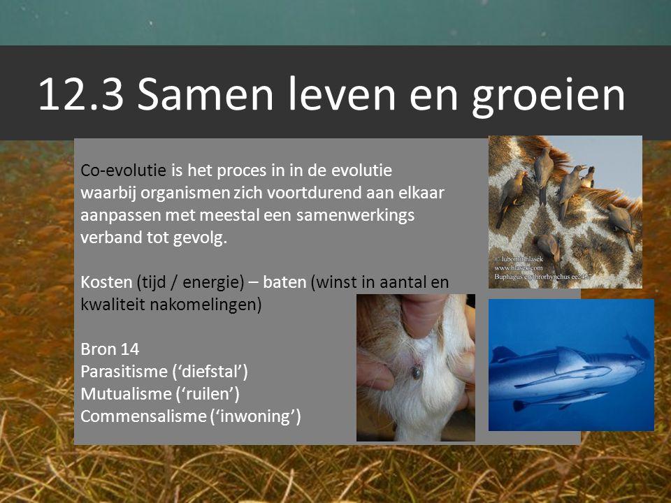 12.3 Samen leven en groeien Co-evolutie is het proces in in de evolutie. waarbij organismen zich voortdurend aan elkaar.
