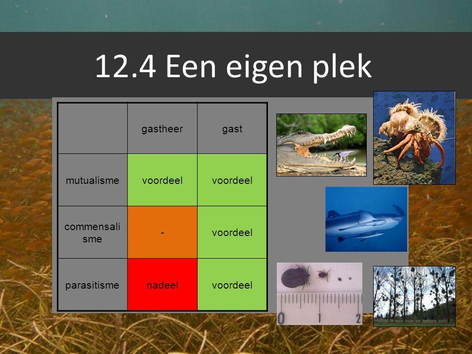 12.4 Een eigen plek gastheer gast mutualisme voordeel commensalisme -
