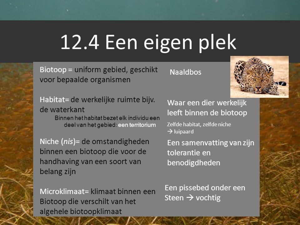 12.4 Een eigen plek Biotoop = uniform gebied, geschikt voor bepaalde organismen. Habitat= de werkelijke ruimte bijv. de waterkant.