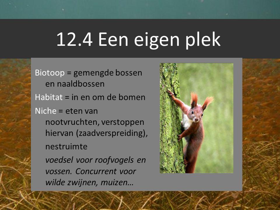 12.4 Een eigen plek Biotoop = gemengde bossen en naaldbossen