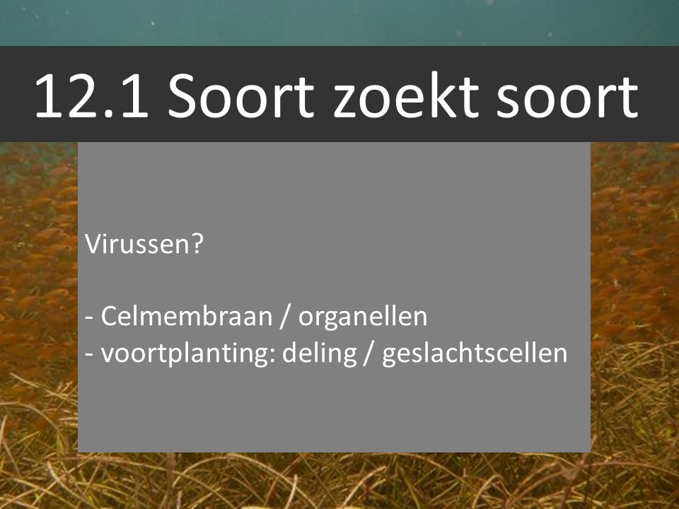 12.1 Soort zoekt soort Virussen - Celmembraan / organellen