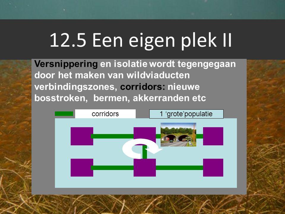 12.5 Een eigen plek II Versnippering en isolatie wordt tegengegaan