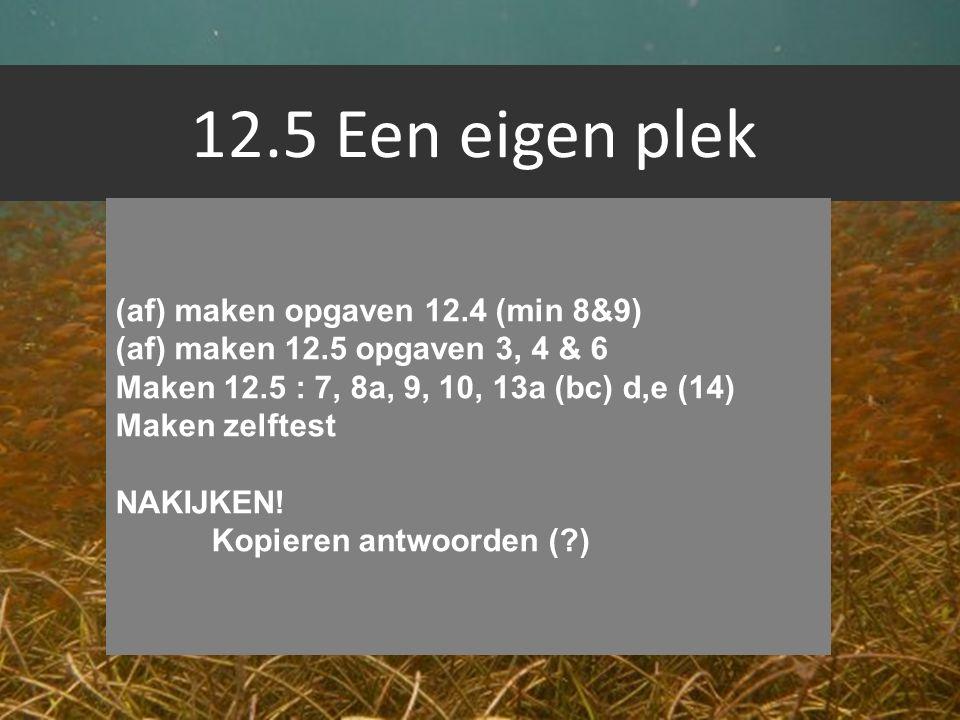 12.5 Een eigen plek (af) maken opgaven 12.4 (min 8&9)