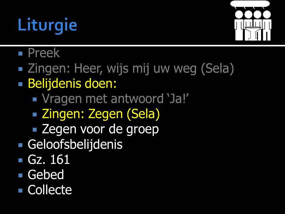 Liturgie Preek Zingen: Heer, wijs mij uw weg (Sela) Belijdenis doen: