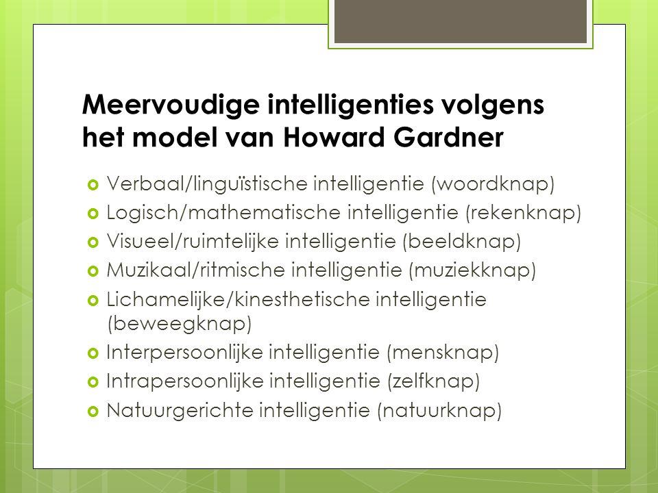 Meervoudige intelligenties volgens het model van Howard Gardner