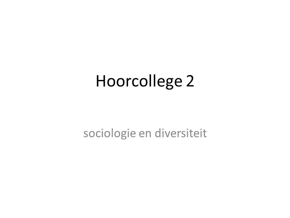 sociologie en diversiteit