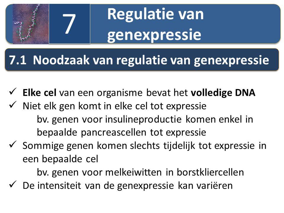 7 7.1 Noodzaak van regulatie van genexpressie