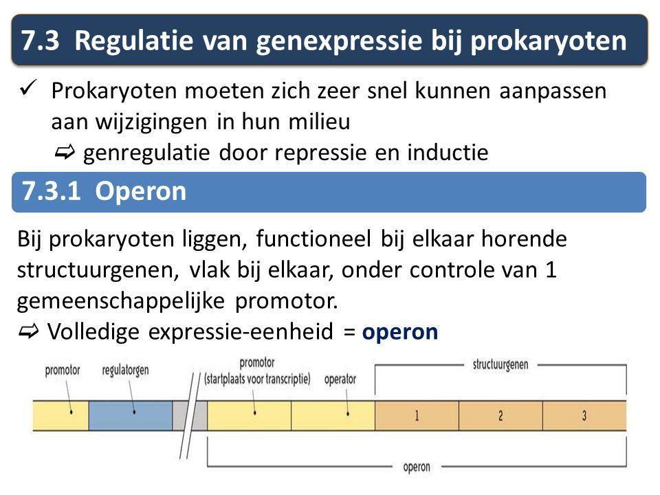 7.3 Regulatie van genexpressie bij prokaryoten