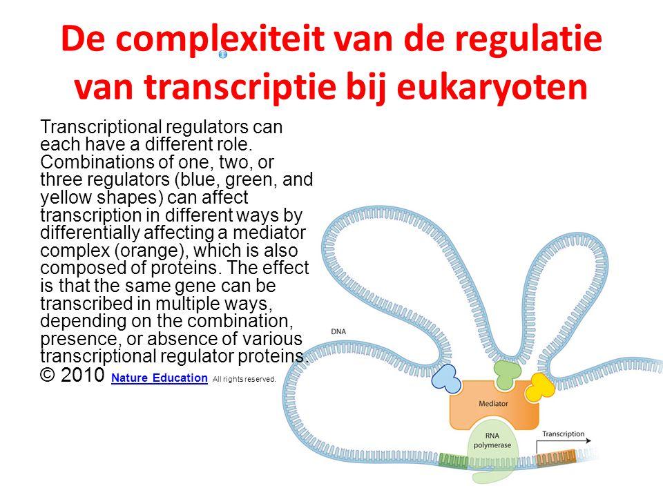 De complexiteit van de regulatie van transcriptie bij eukaryoten