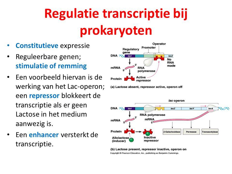 Regulatie transcriptie bij prokaryoten
