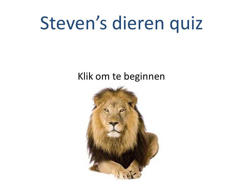 Steven's dieren quiz Klik om te beginnen