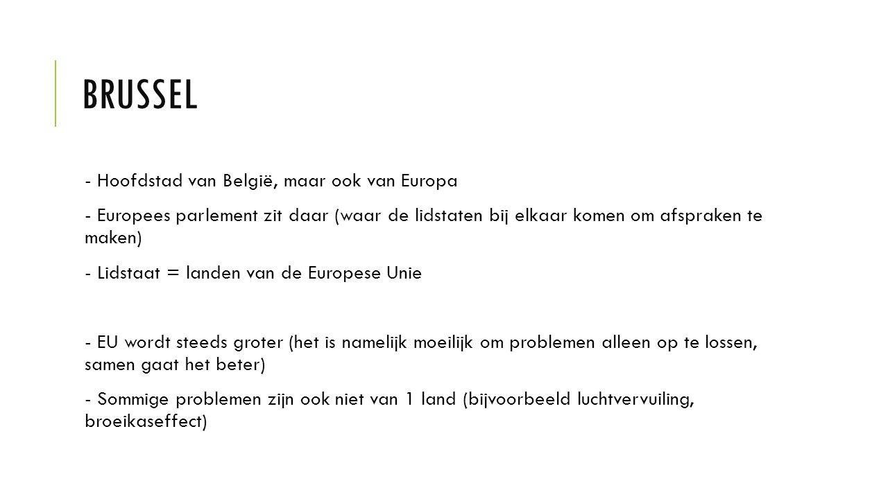 Brussel - Hoofdstad van België, maar ook van Europa