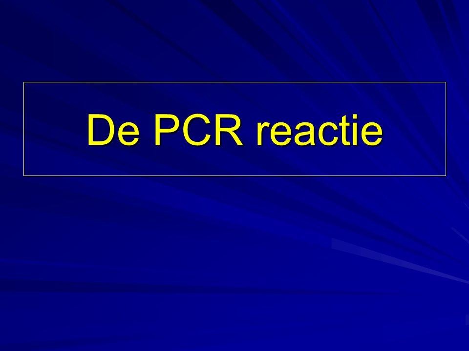 De PCR reactie