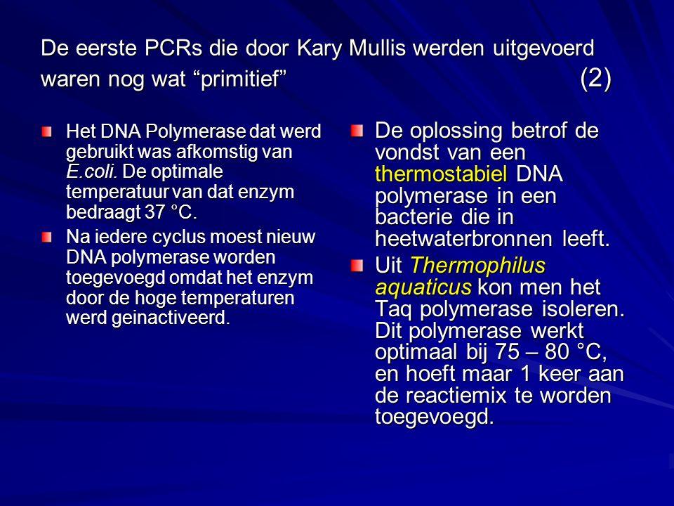 De eerste PCRs die door Kary Mullis werden uitgevoerd waren nog wat primitief (2)