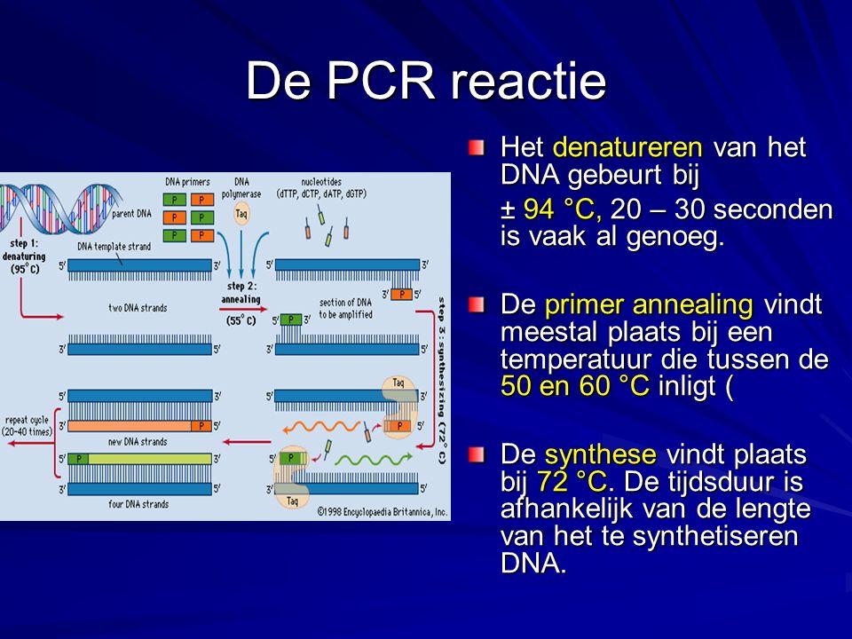 De PCR reactie Het denatureren van het DNA gebeurt bij