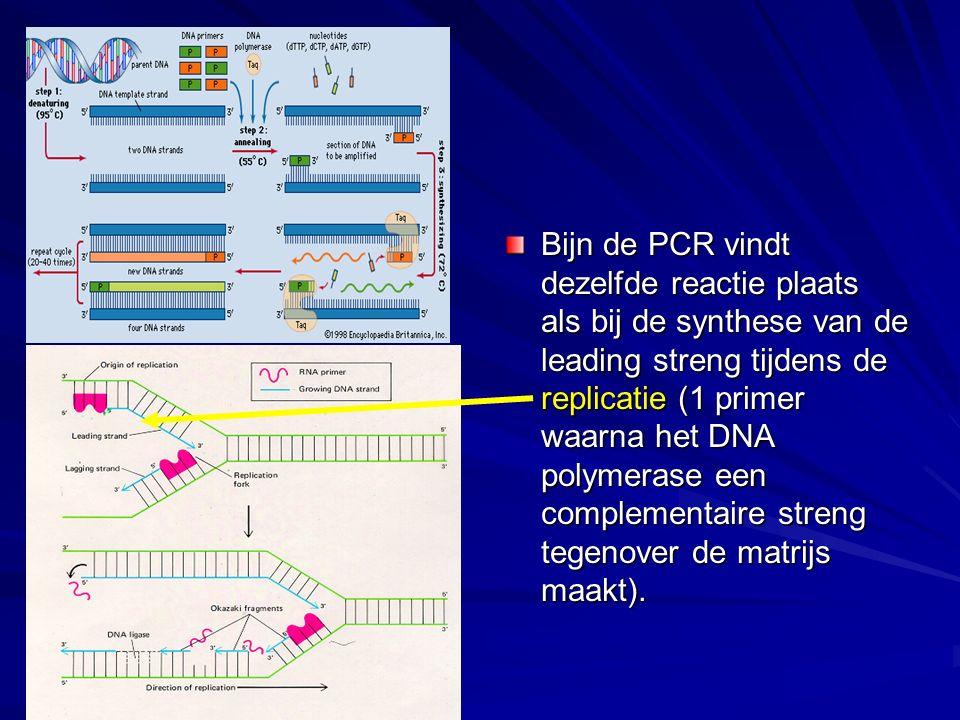 Bijn de PCR vindt dezelfde reactie plaats als bij de synthese van de leading streng tijdens de replicatie (1 primer waarna het DNA polymerase een complementaire streng tegenover de matrijs maakt).