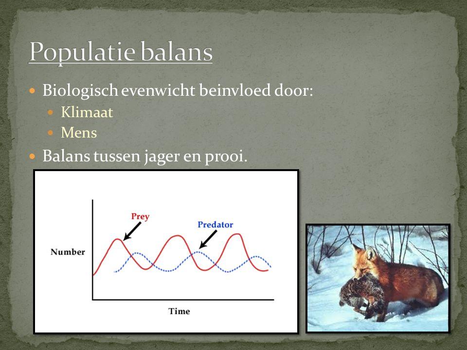 Populatie balans Biologisch evenwicht beinvloed door: