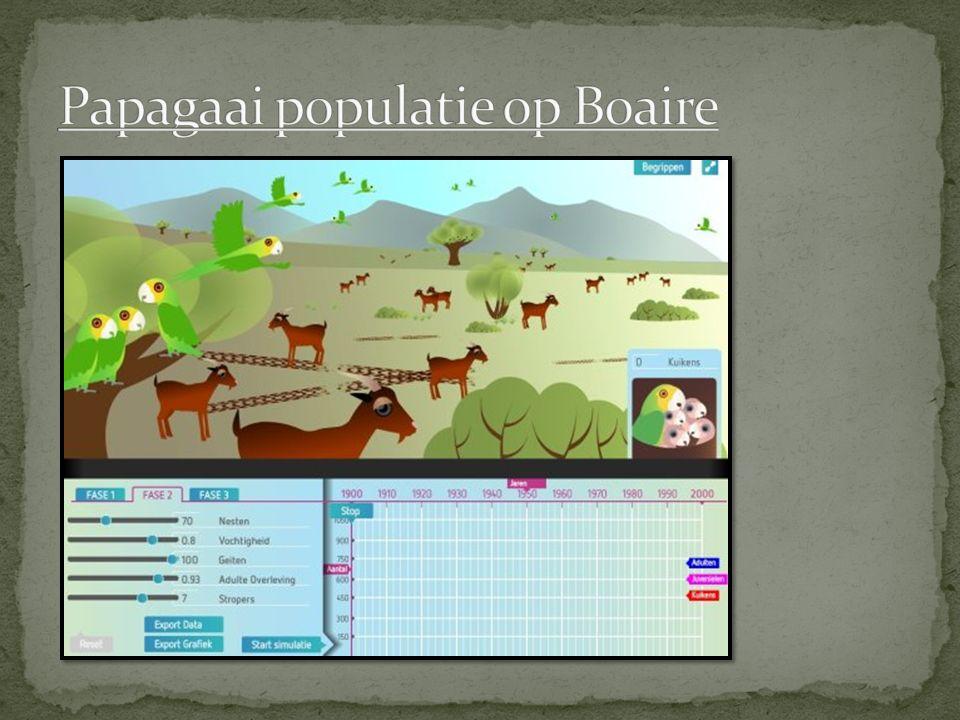 Papagaai populatie op Boaire