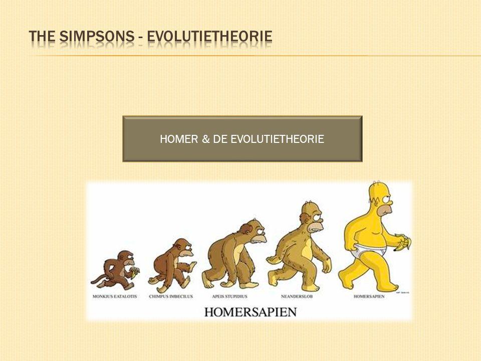 THE SIMPSONS - EVOLUTIETHEORIE