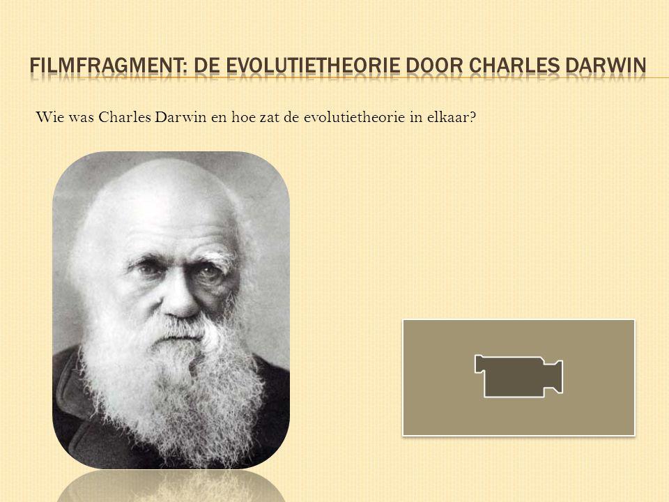 Filmfragment: de Evolutietheorie door charles darwin