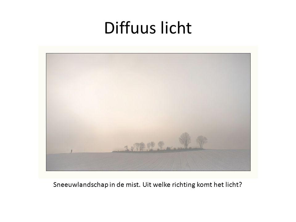 Diffuus licht Sneeuwlandschap in de mist. Uit welke richting komt het licht