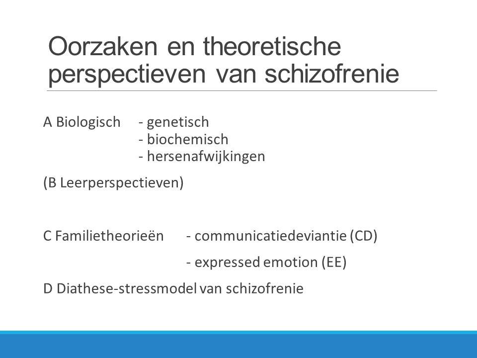 Oorzaken en theoretische perspectieven van schizofrenie