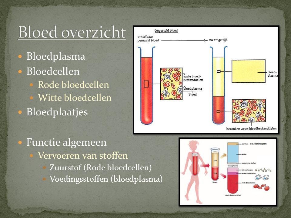 Bloed overzicht Bloedplasma Bloedcellen Bloedplaatjes Functie algemeen