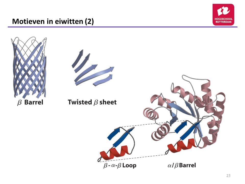 Motieven in eiwitten (2)