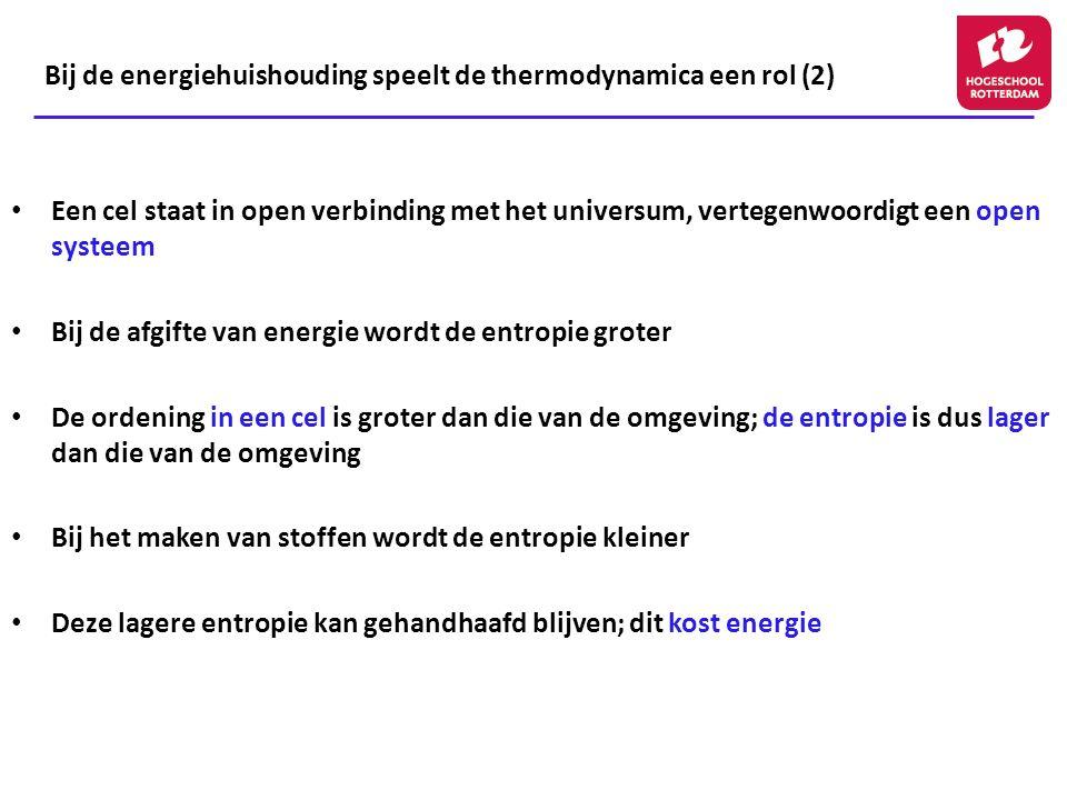 Bij de energiehuishouding speelt de thermodynamica een rol (2)