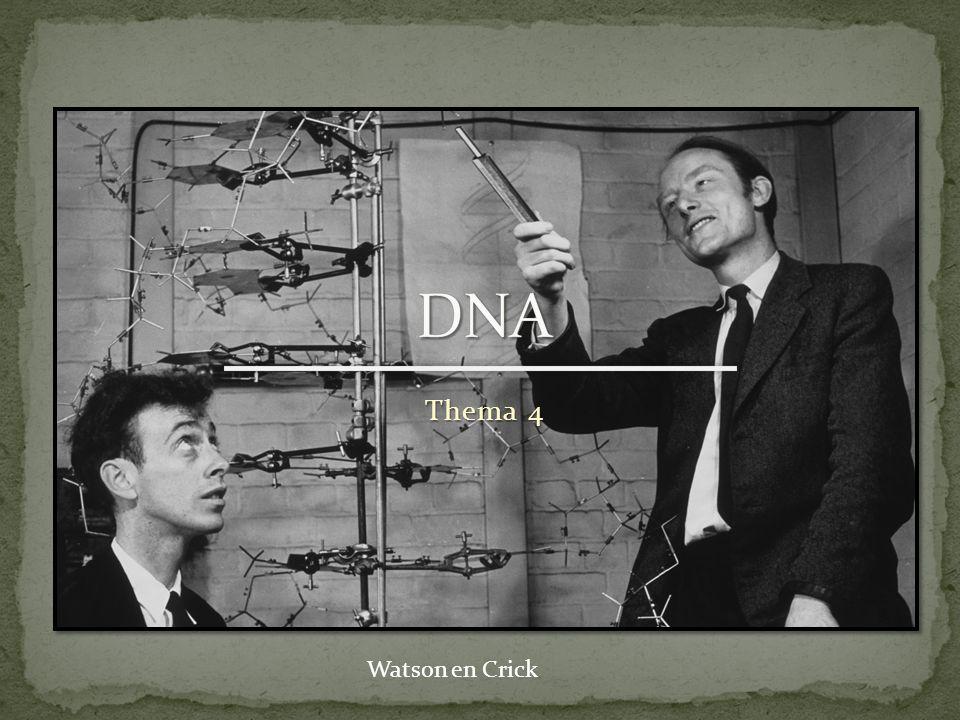 DNA Thema 4 Watson en Crick