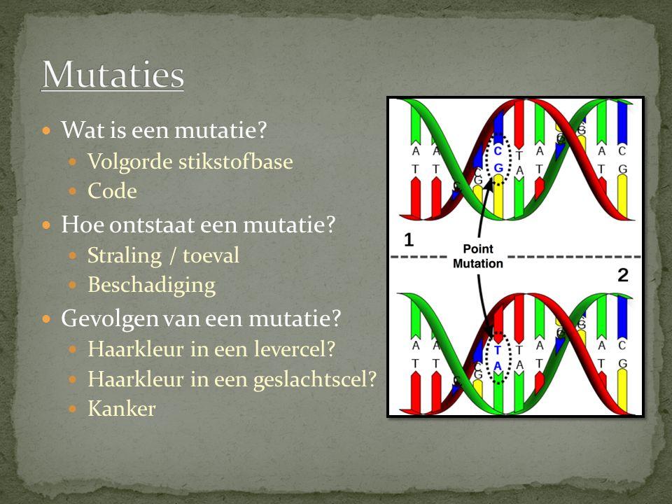 Mutaties Wat is een mutatie Hoe ontstaat een mutatie