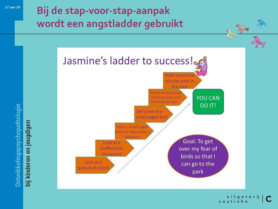 Bij de stap-voor-stap-aanpak wordt een angstladder gebruikt