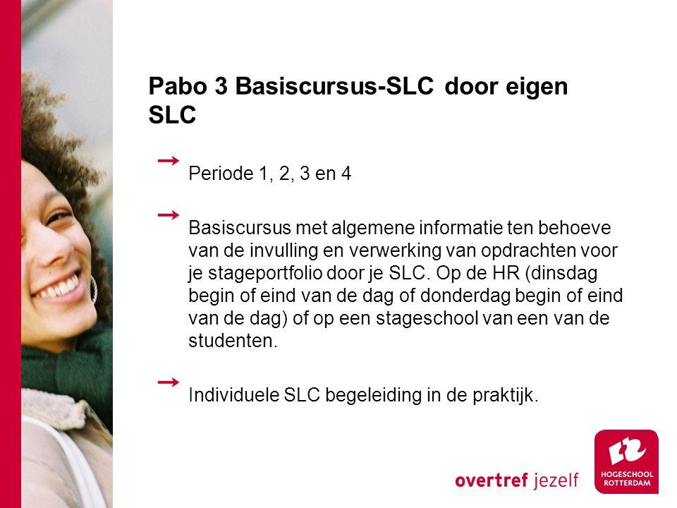 Pabo 3 Basiscursus-SLC door eigen SLC