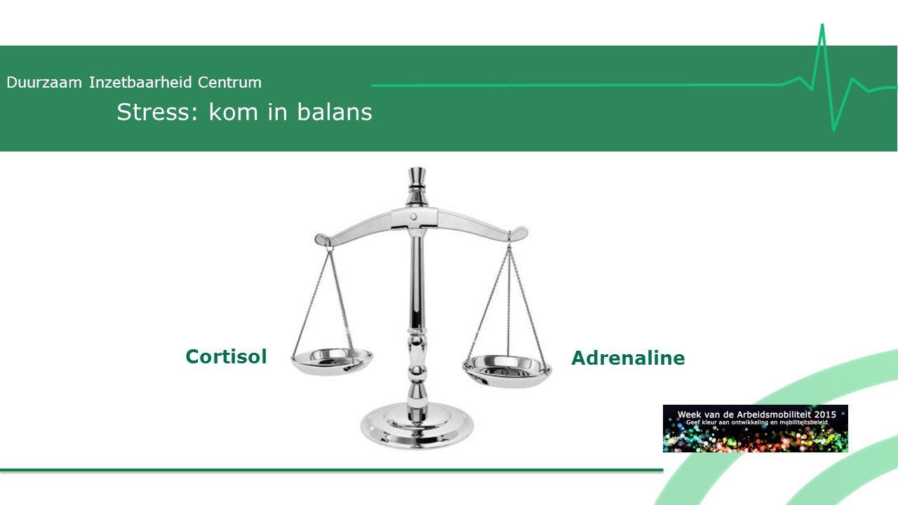 Stress: kom in balans Cortisol Adrenaline
