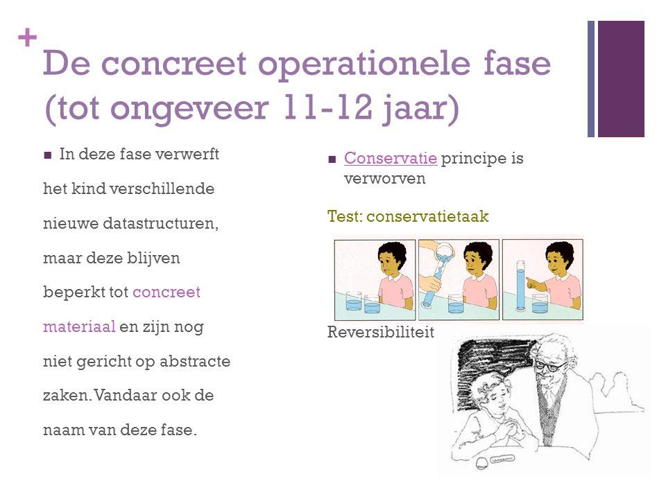 De concreet operationele fase (tot ongeveer 11-12 jaar)