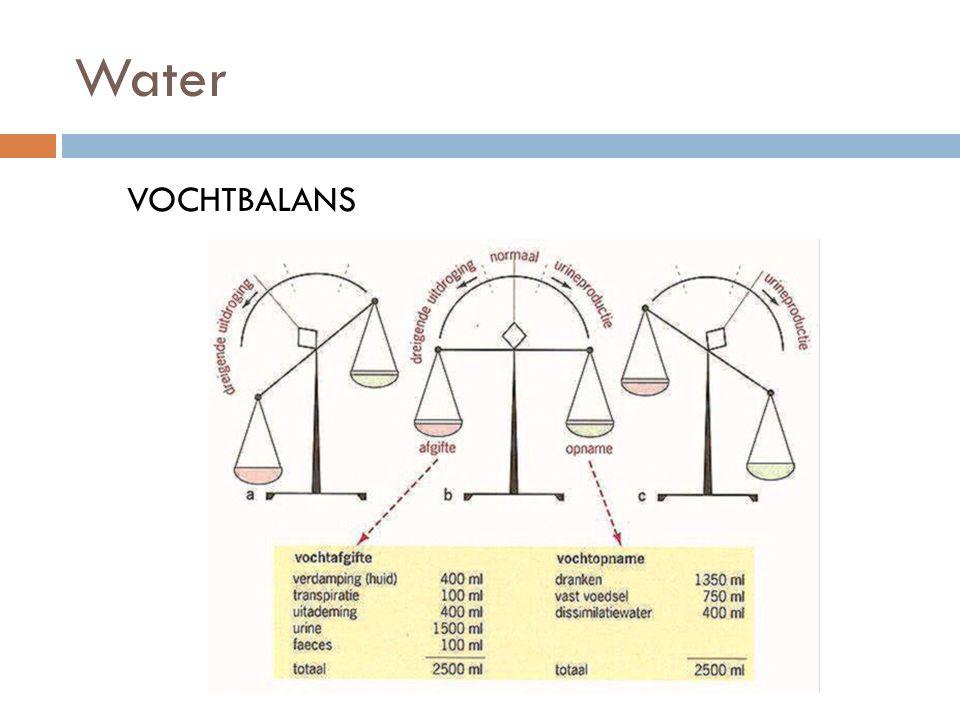 Water VOCHTBALANS
