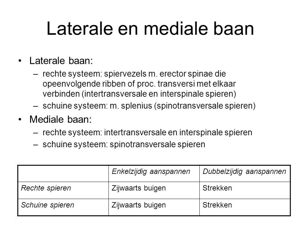 Laterale en mediale baan