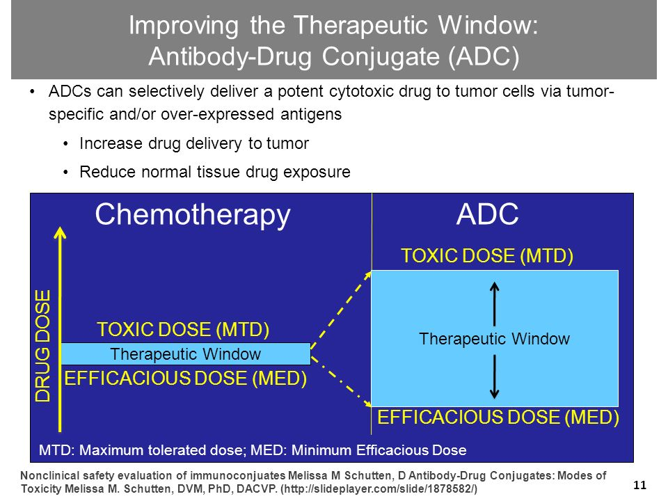 Improving the Therapeutic Window: Antibody-Drug Conjugate (ADC)