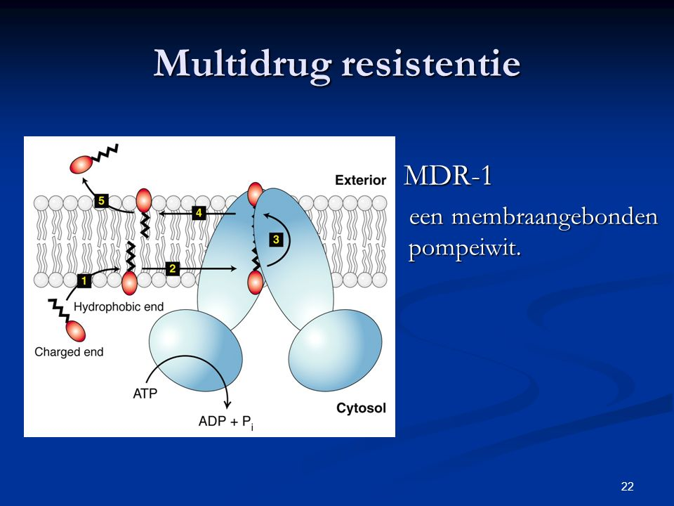 Multidrug resistentie