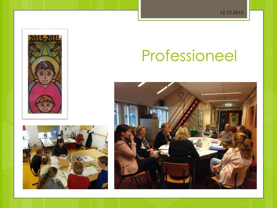 25-4-2017 Professioneel ouderavond De Skûle/ De Wyngert 17-11-2015