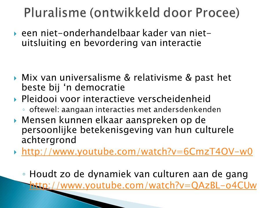 Pluralisme (ontwikkeld door Procee)