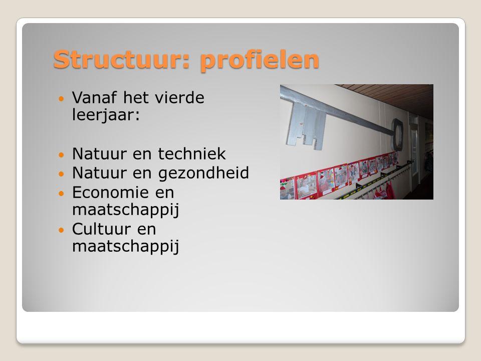 Structuur: profielen Vanaf het vierde leerjaar: Natuur en techniek