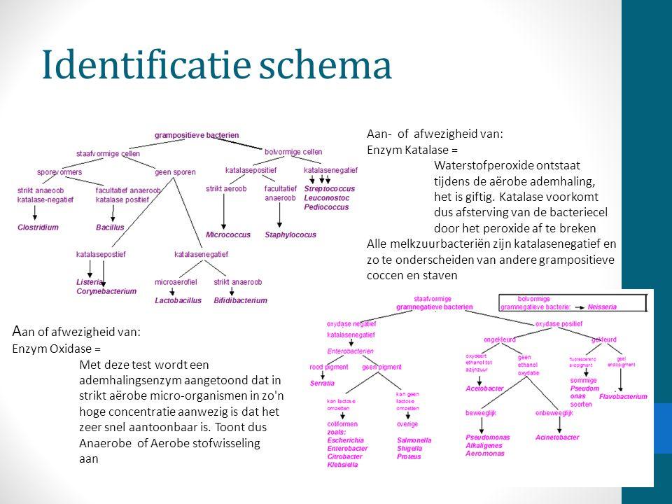 Identificatie schema Aan of afwezigheid van: Aan- of afwezigheid van: