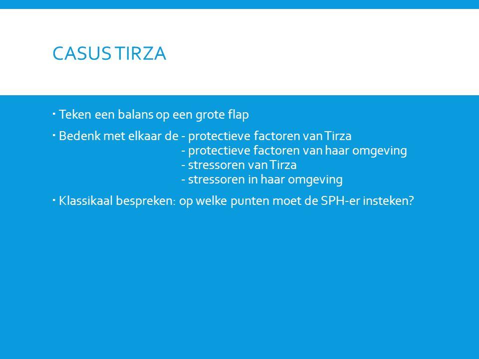 Casus Tirza Teken een balans op een grote flap